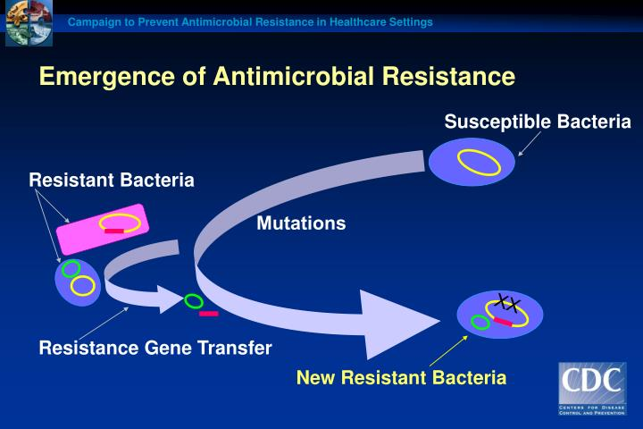 Emergence of antimicrobial resistance l.jpg
