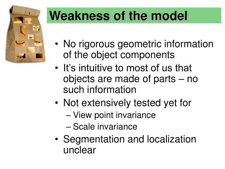 Weakness of the model
