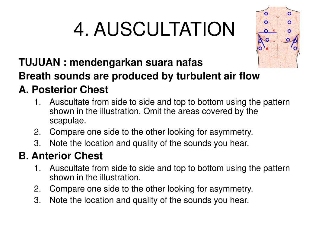 4. AUSCULTATION