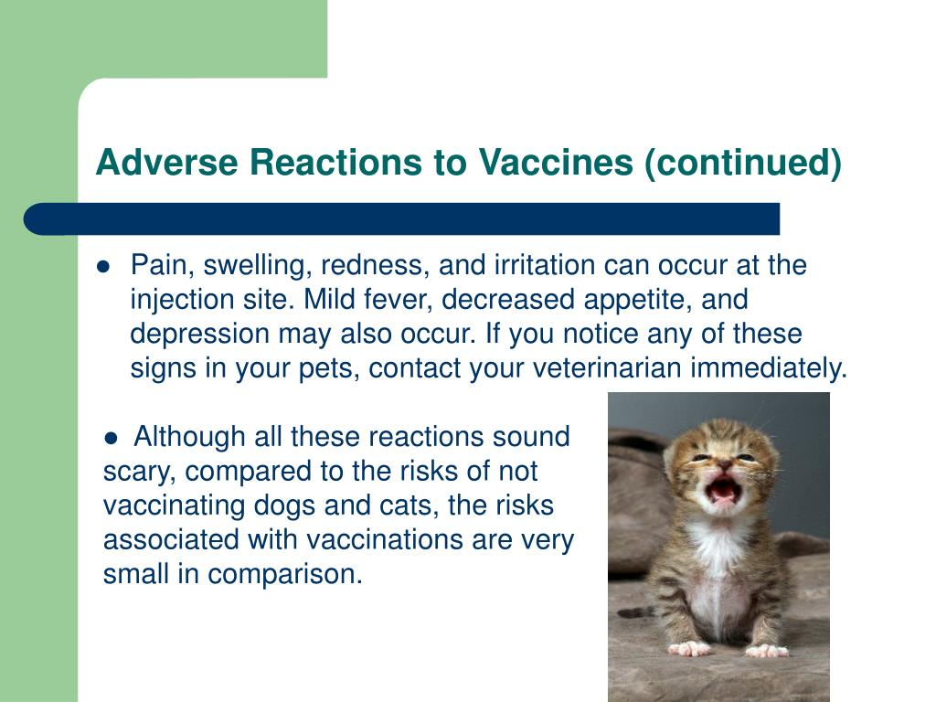 Adverse Reactions to Vaccines (continued)