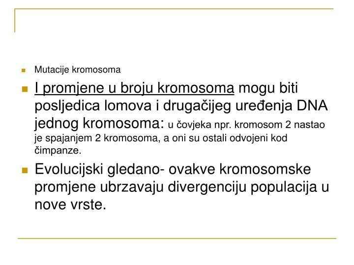 Mutacije kromosoma