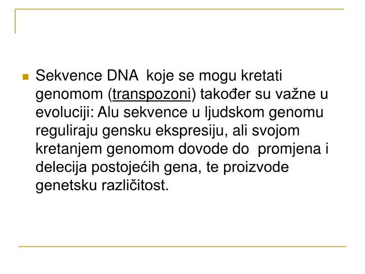 Sekvence DNA  koje se mogu kretati genomom (