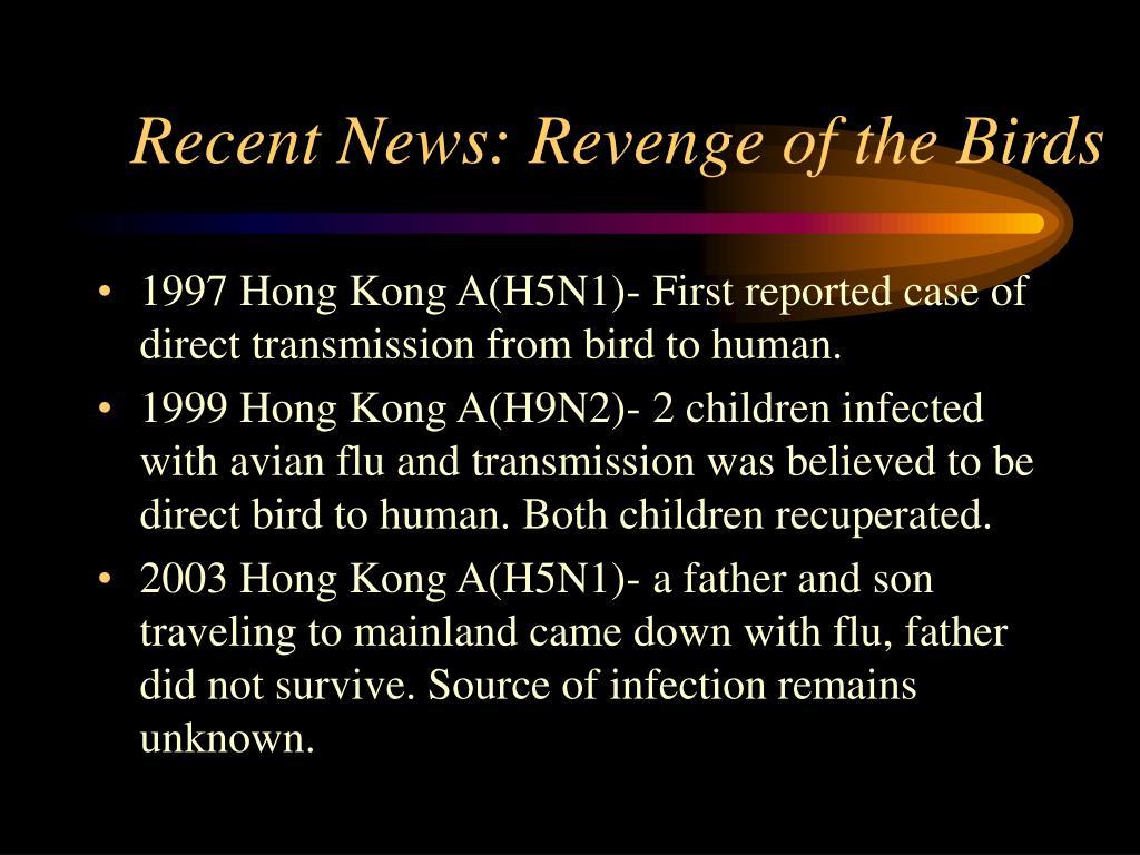 Recent News: Revenge of the Birds