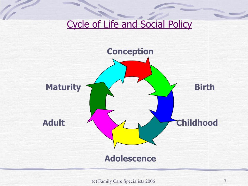 Cycle of Life and Social Policy