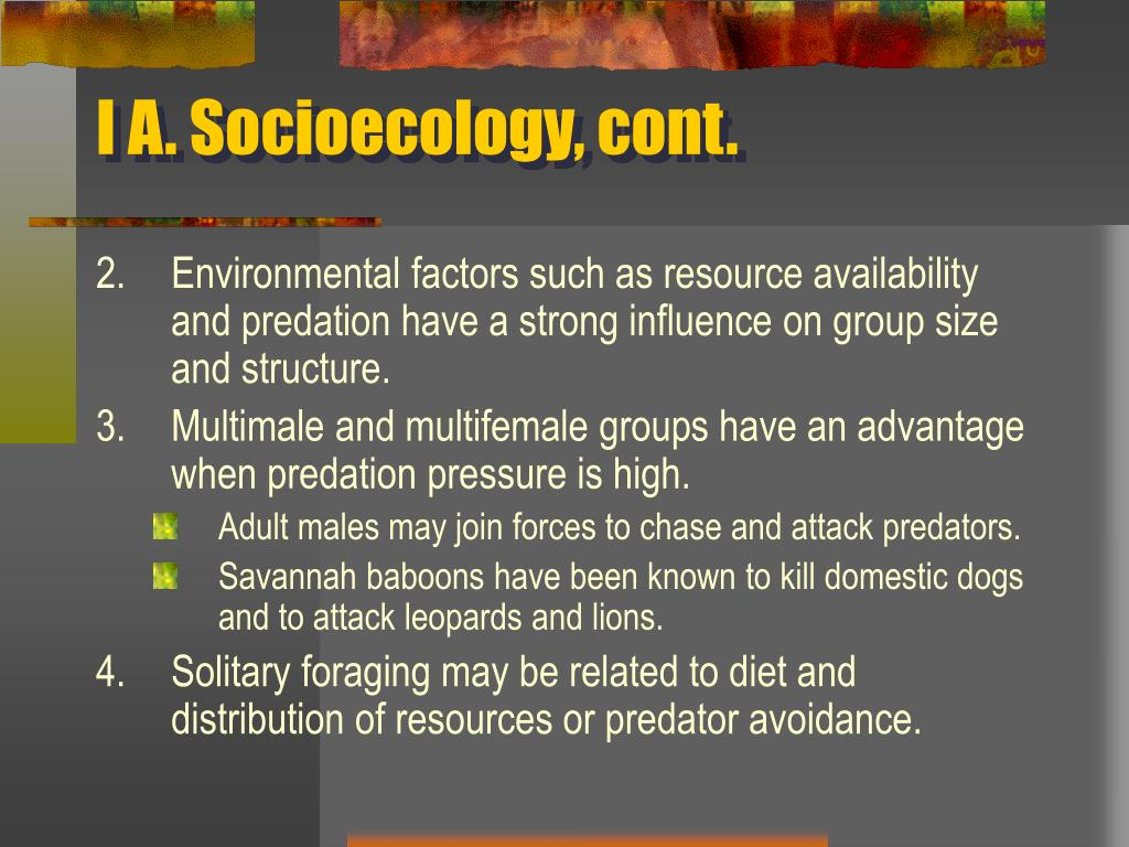 I A. Socioecology, cont.