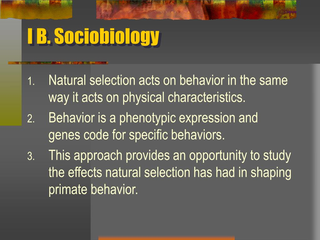I B. Sociobiology