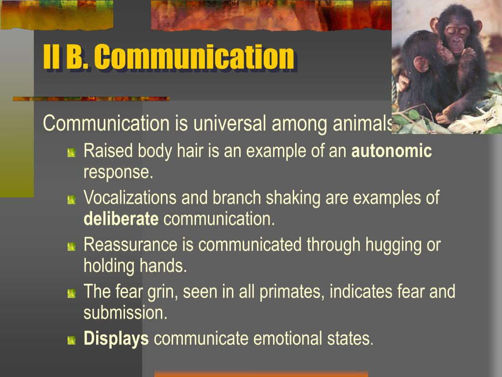 II B. Communication