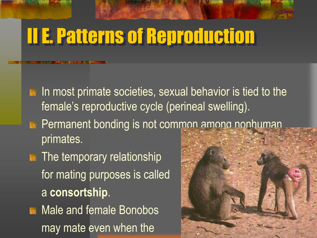 II E. Patterns of Reproduction