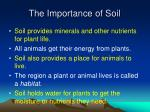 the importance of soil