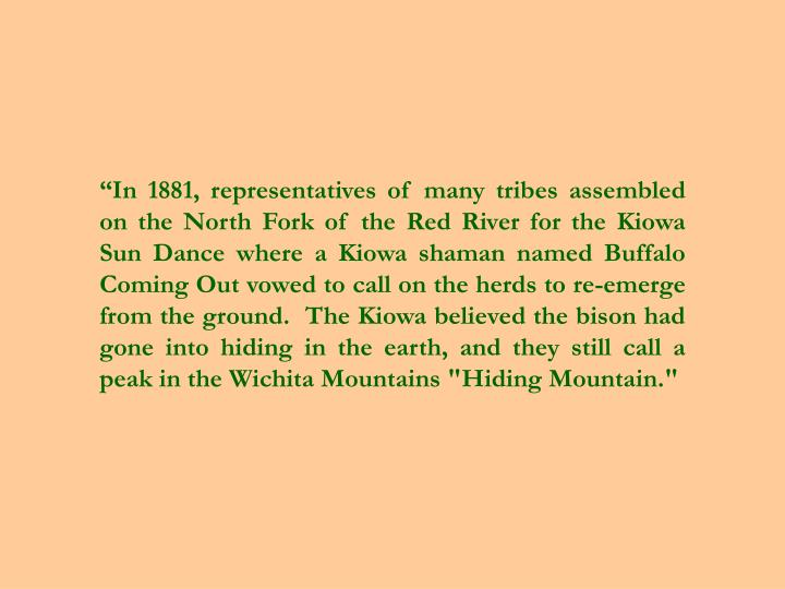 """In 1881, representatives of many tribes assembled on the North Fork of the Red River for the Kiowa Sun Dance where a Kiowa shaman named Buffalo Coming Out vowed to call on the herds to re-emerge from the ground.  The Kiowa believed the bison had gone into hiding in the earth, and they still call a peak in the Wichita Mountains ""Hiding Mountain."""
