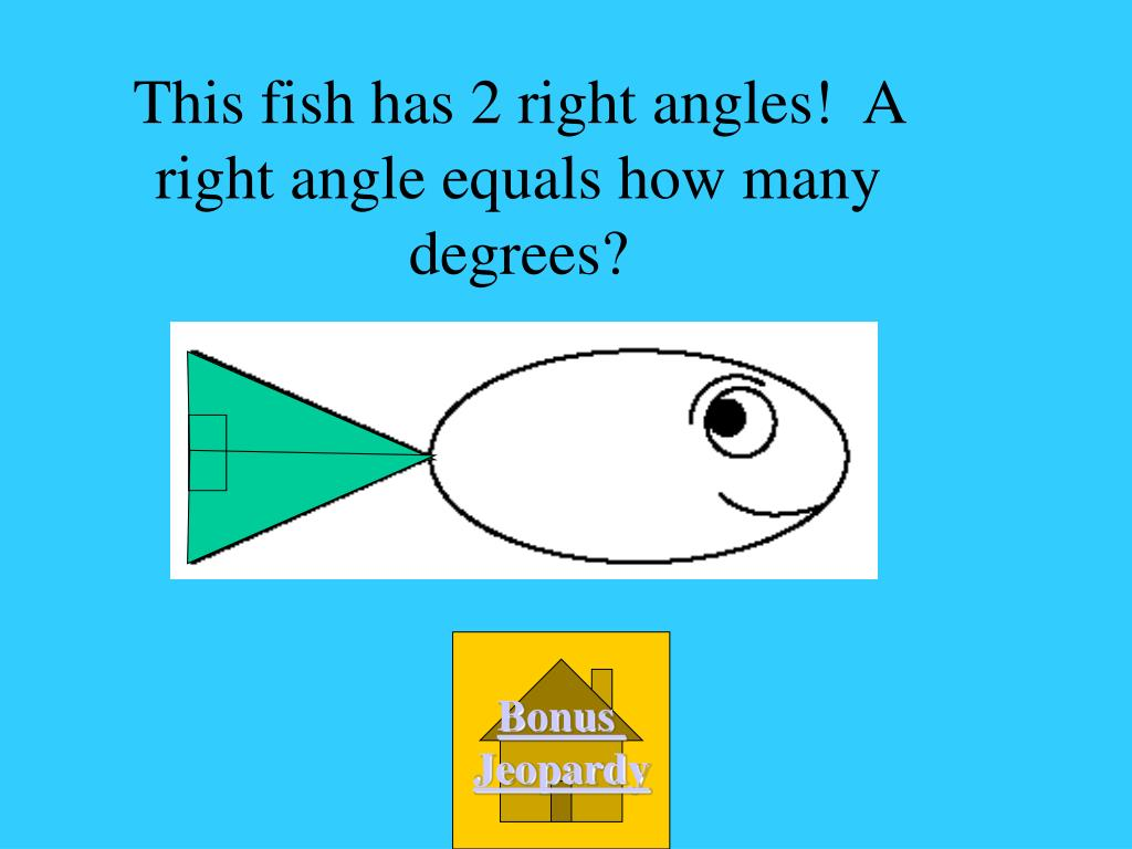 This fish has 2 right angles!  A right angle equals how many degrees?