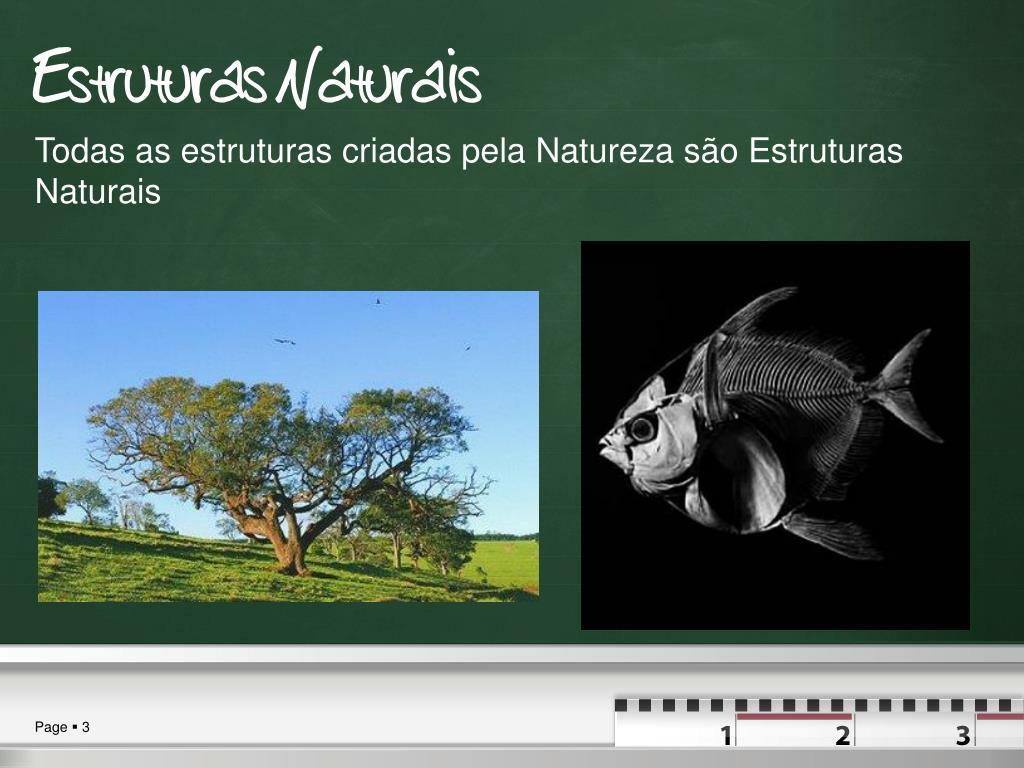 Estruturas Naturais