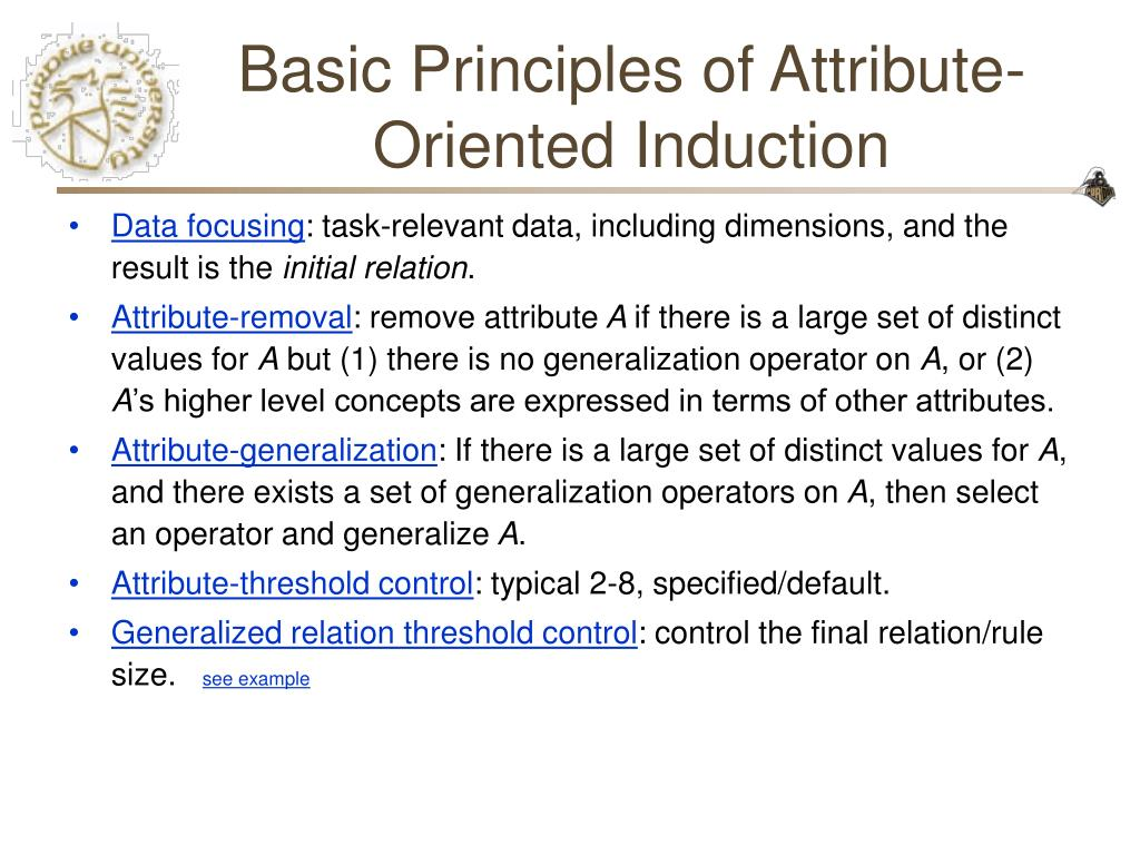 Basic Principles of Attribute-Oriented Induction