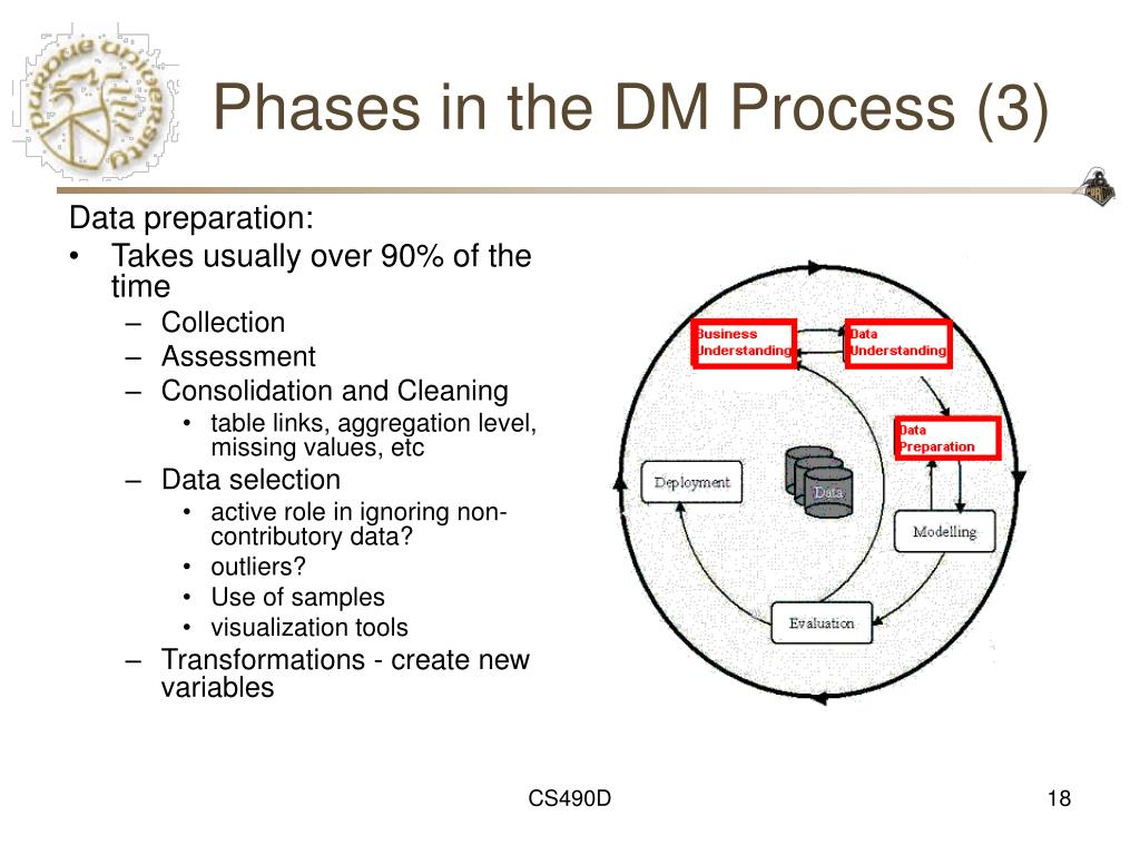 Phases in the DM Process (3)