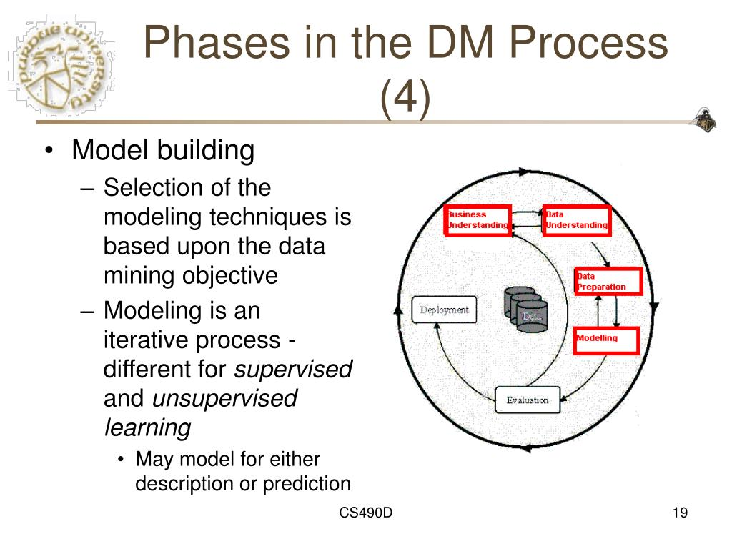 Phases in the DM Process (4)