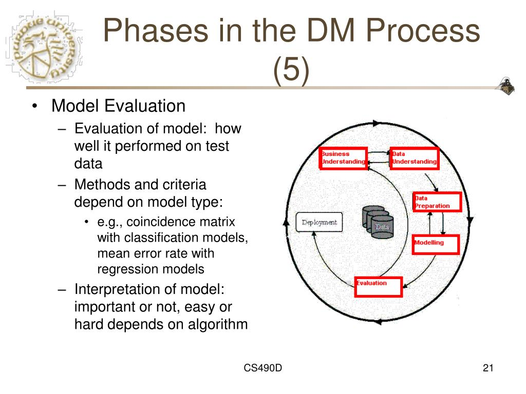 Phases in the DM Process (5)