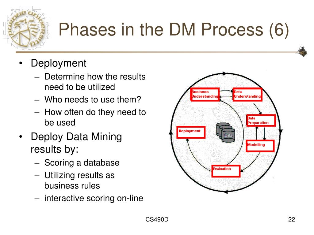 Phases in the DM Process (6)