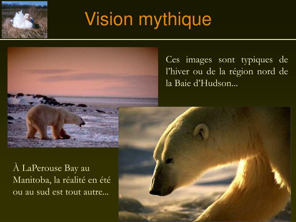 Vision mythique