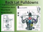 back lat pulldowns