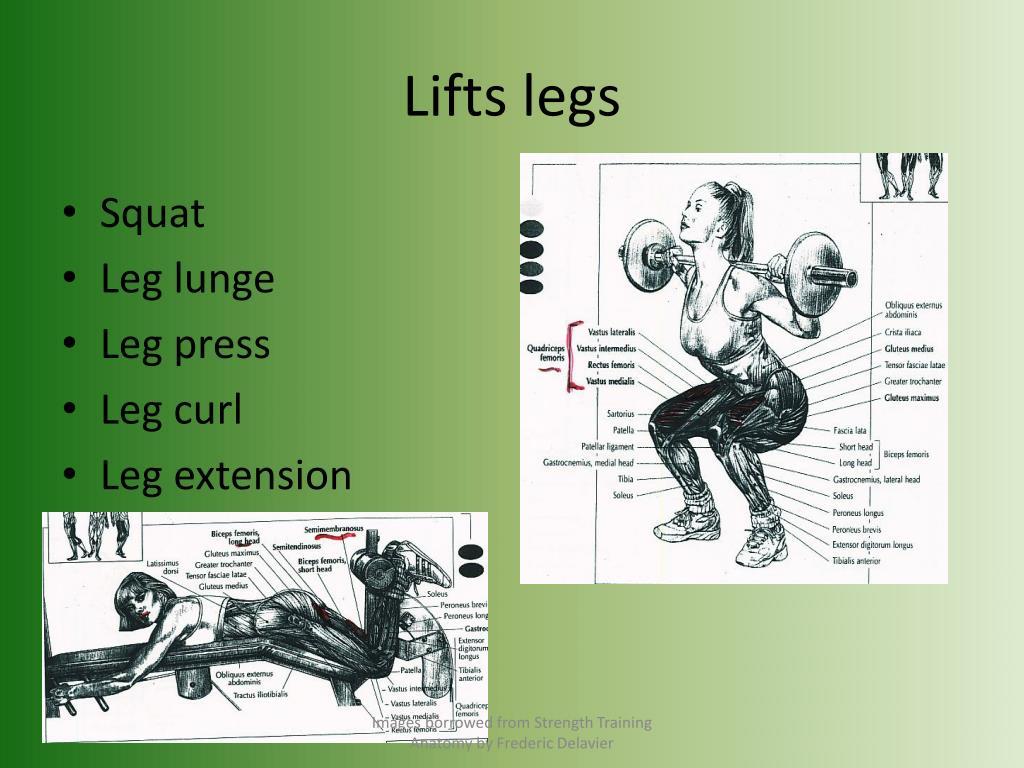 Lifts legs