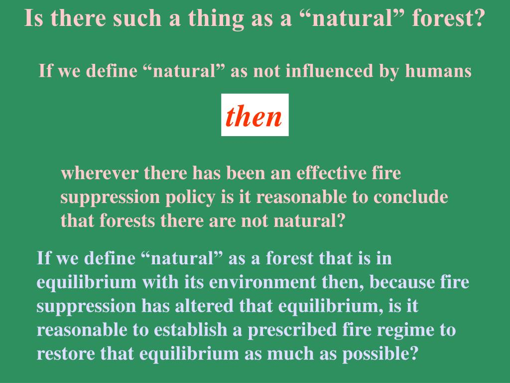 "Is there such a thing as a ""natural"" forest?"