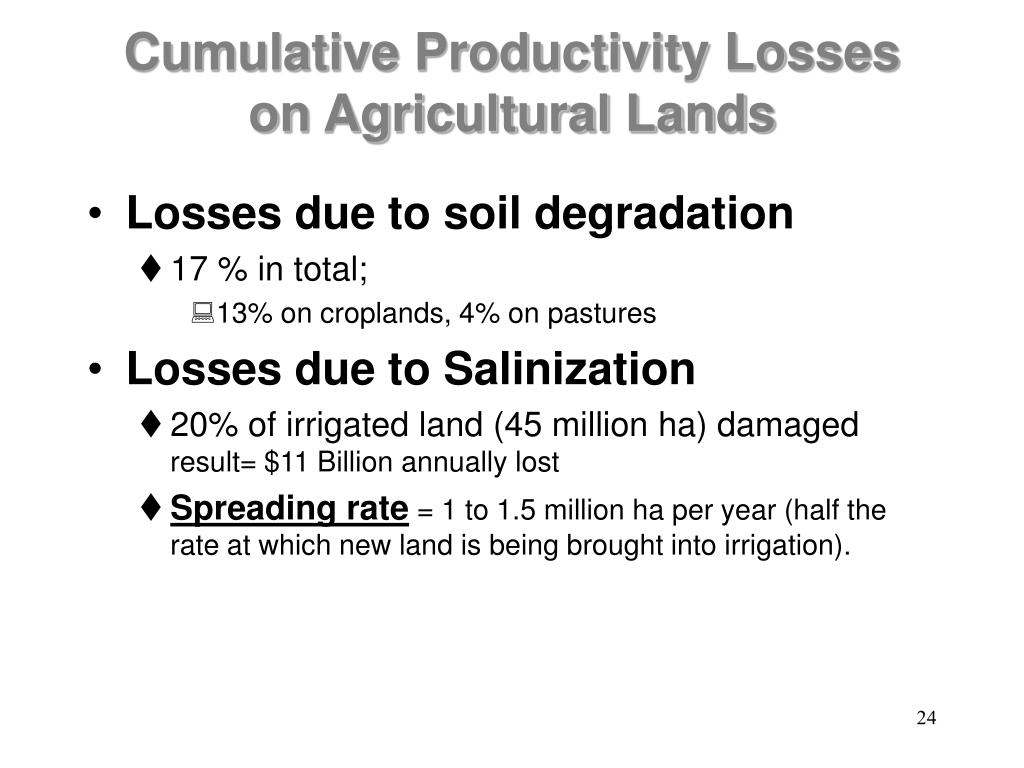 Cumulative Productivity Losses