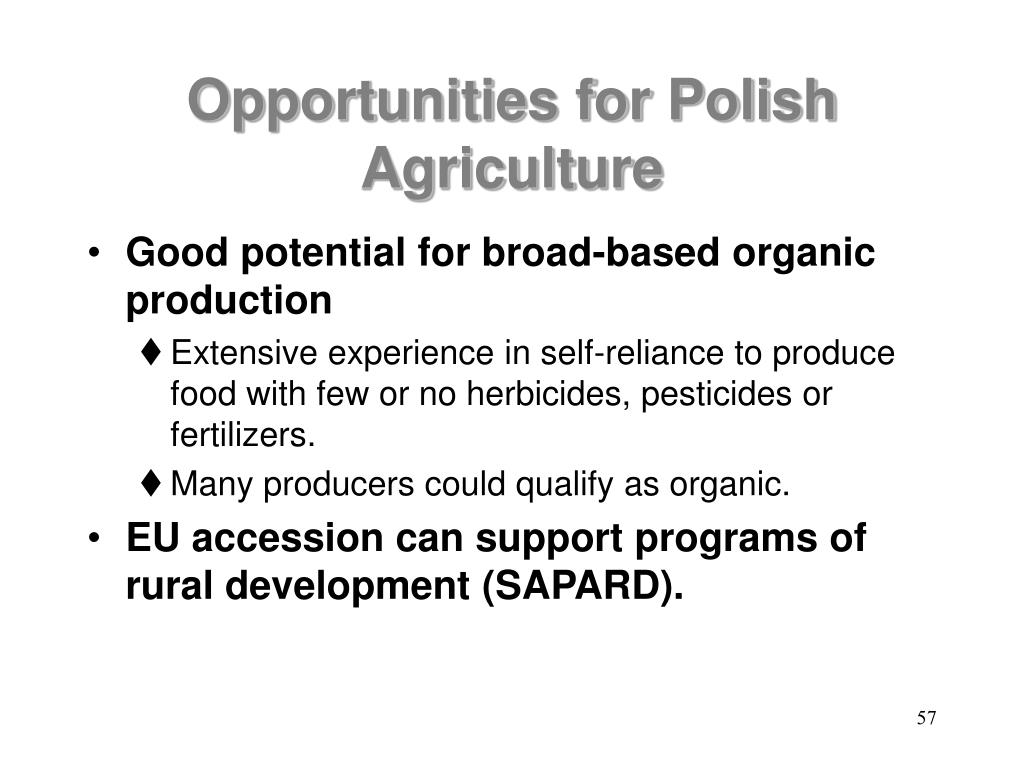 Opportunities for Polish Agriculture