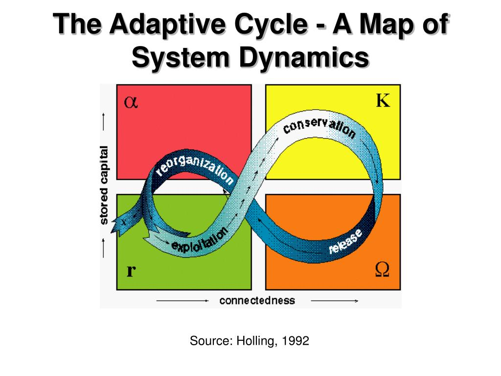 The Adaptive Cycle - A Map of System Dynamics