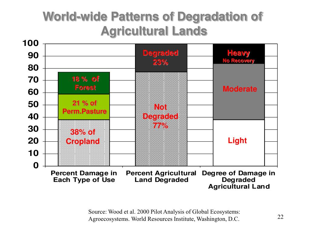 World-wide Patterns of Degradation of
