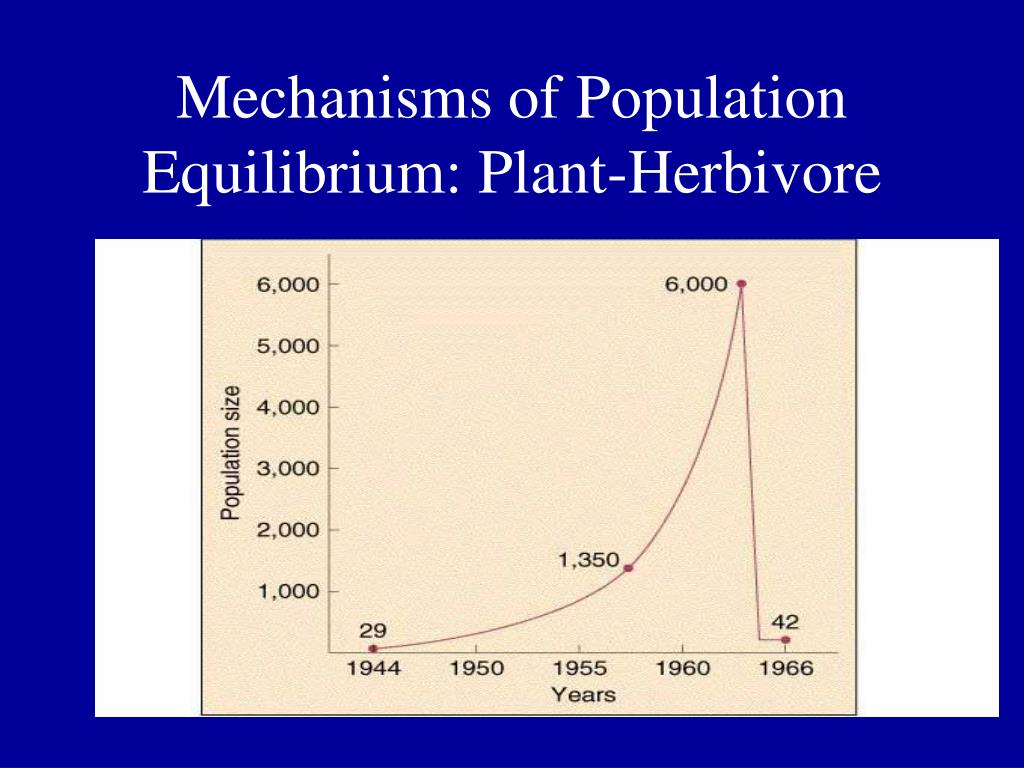 Mechanisms of Population Equilibrium: Plant-Herbivore