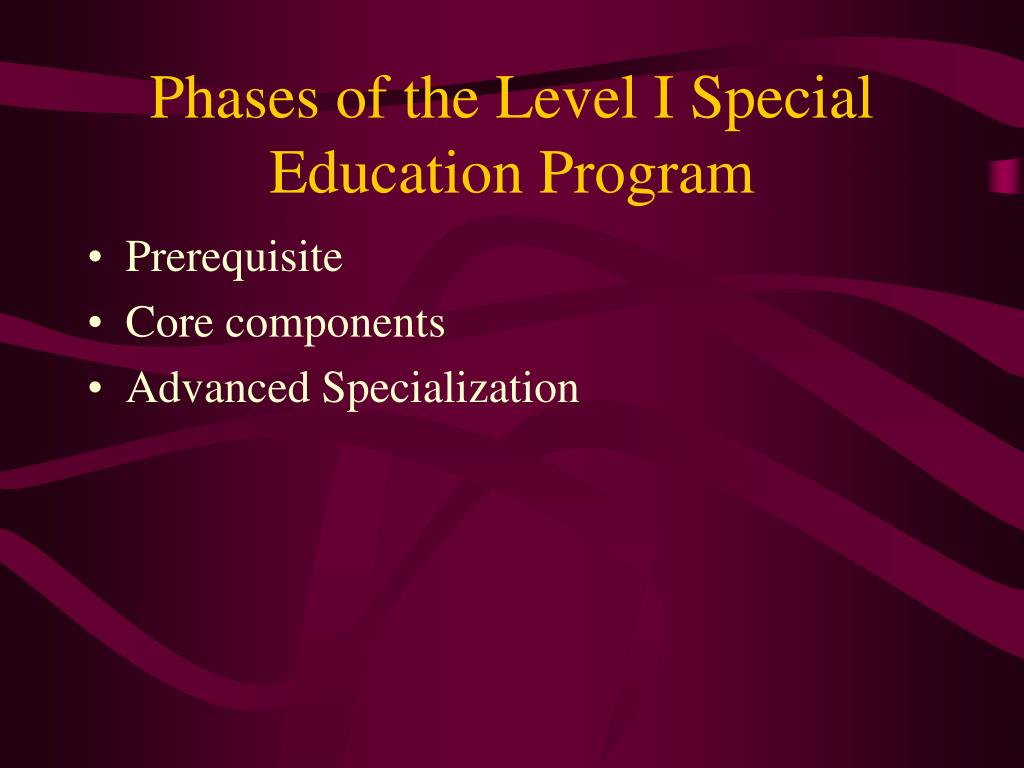 Phases of the Level I Special Education Program