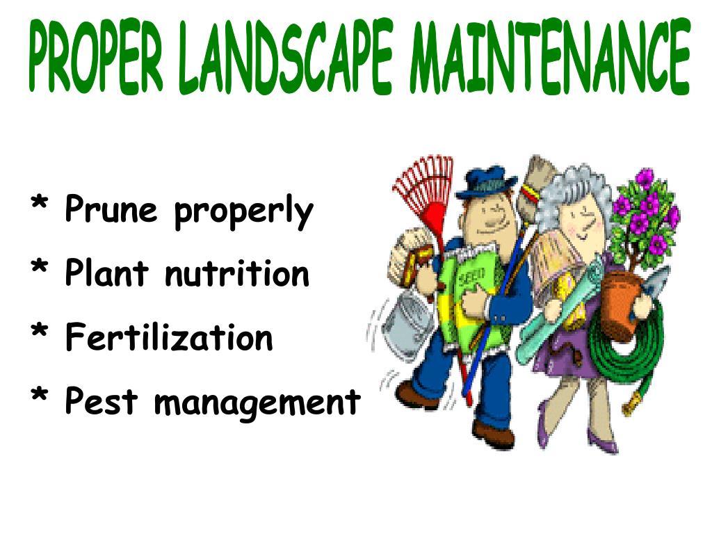 PROPER LANDSCAPE MAINTENANCE