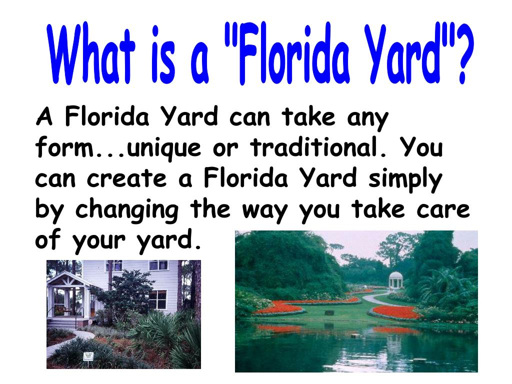 "What is a ""Florida Yard""?"