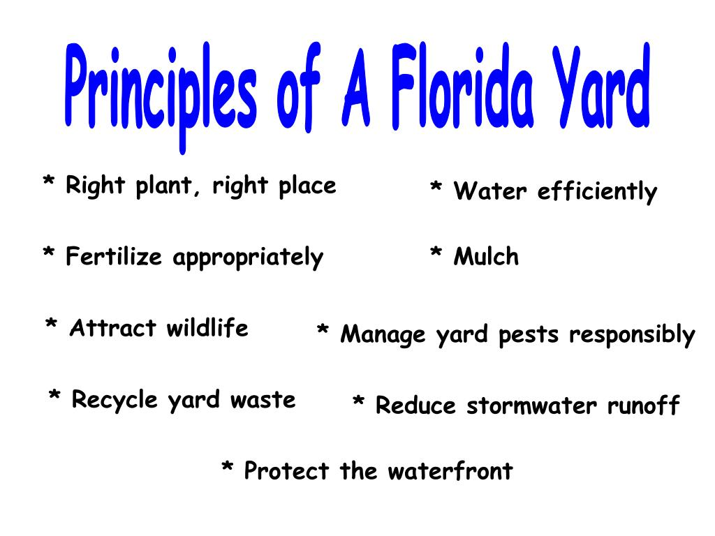 Principles of A Florida Yard