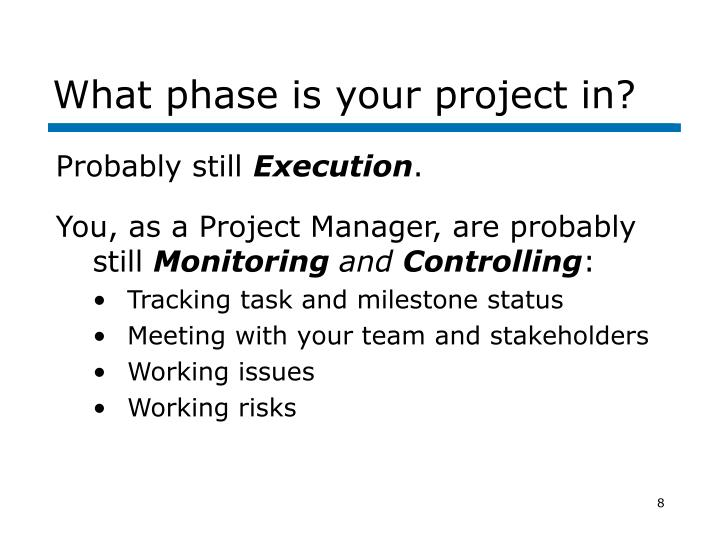 What phase is your project in?