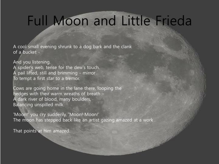 full moon and little frieda essay
