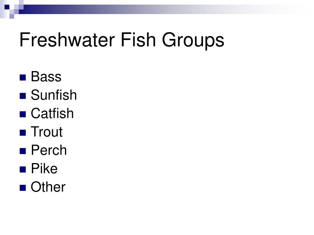 Freshwater Fish Groups