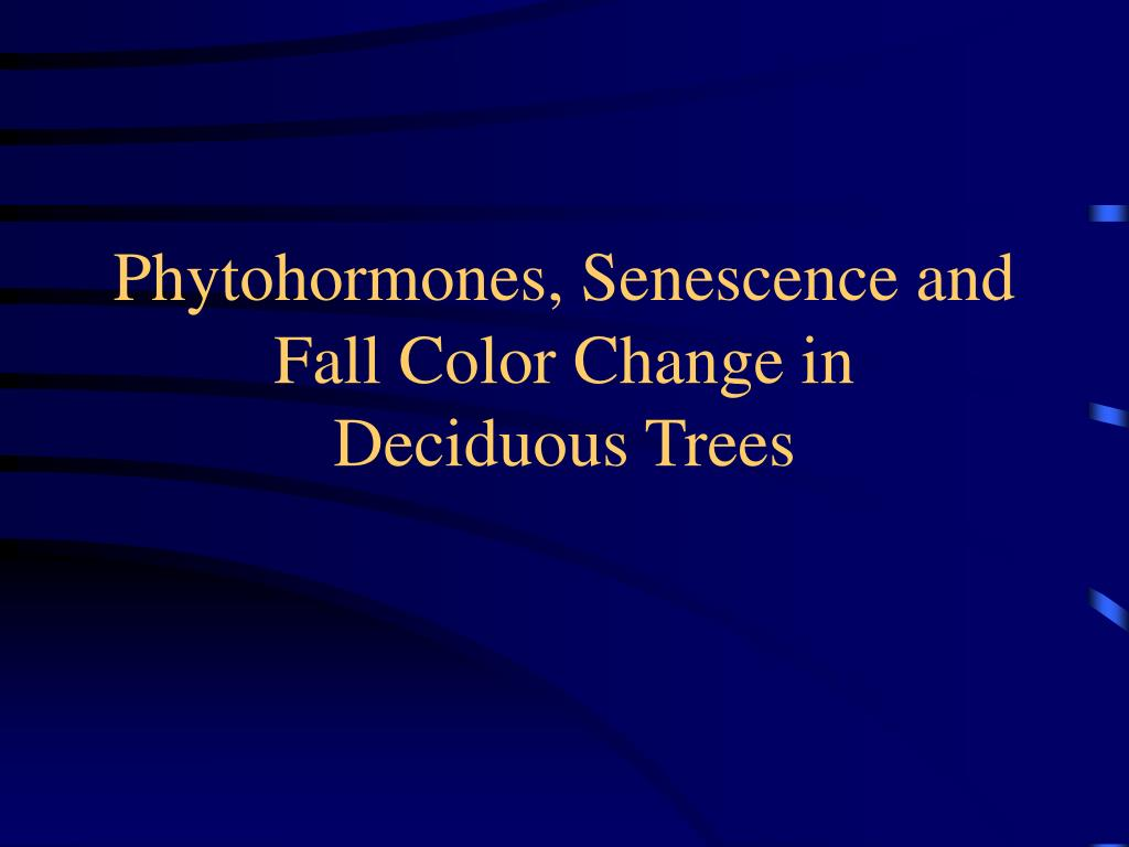 Phytohormones, Senescence and