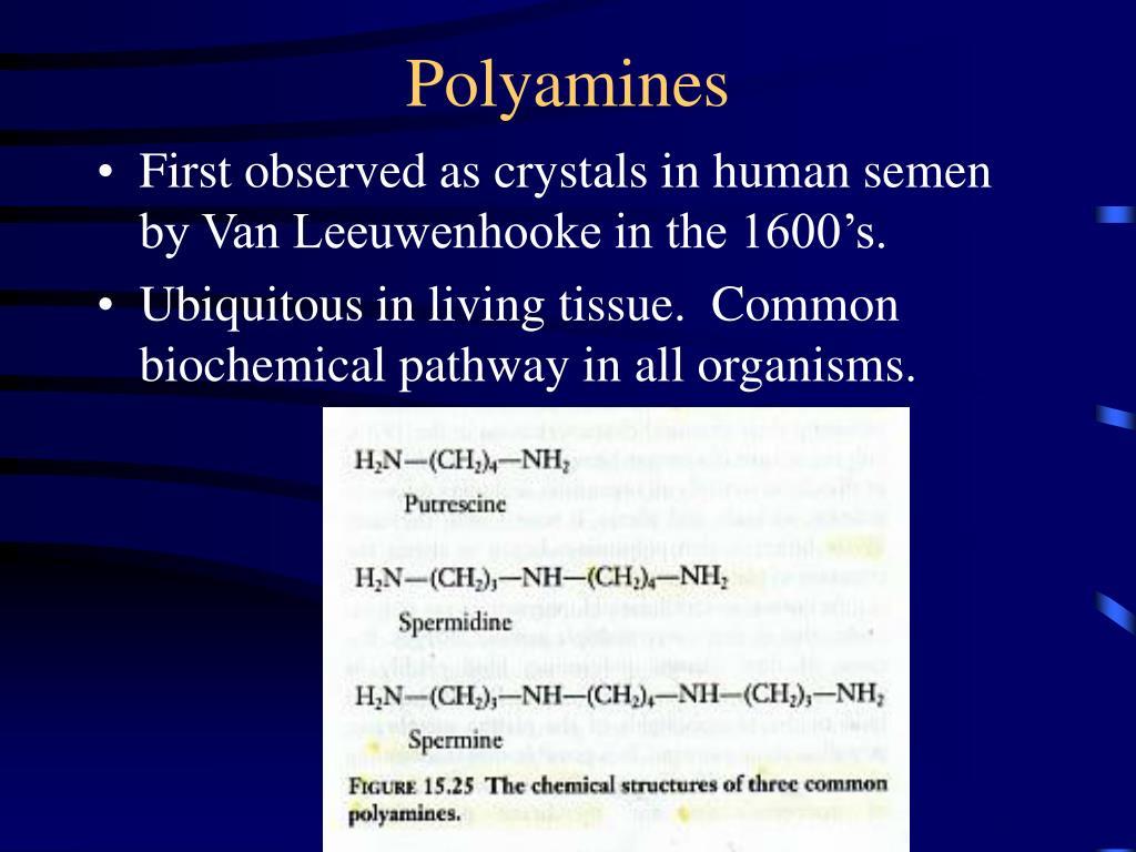 Polyamines