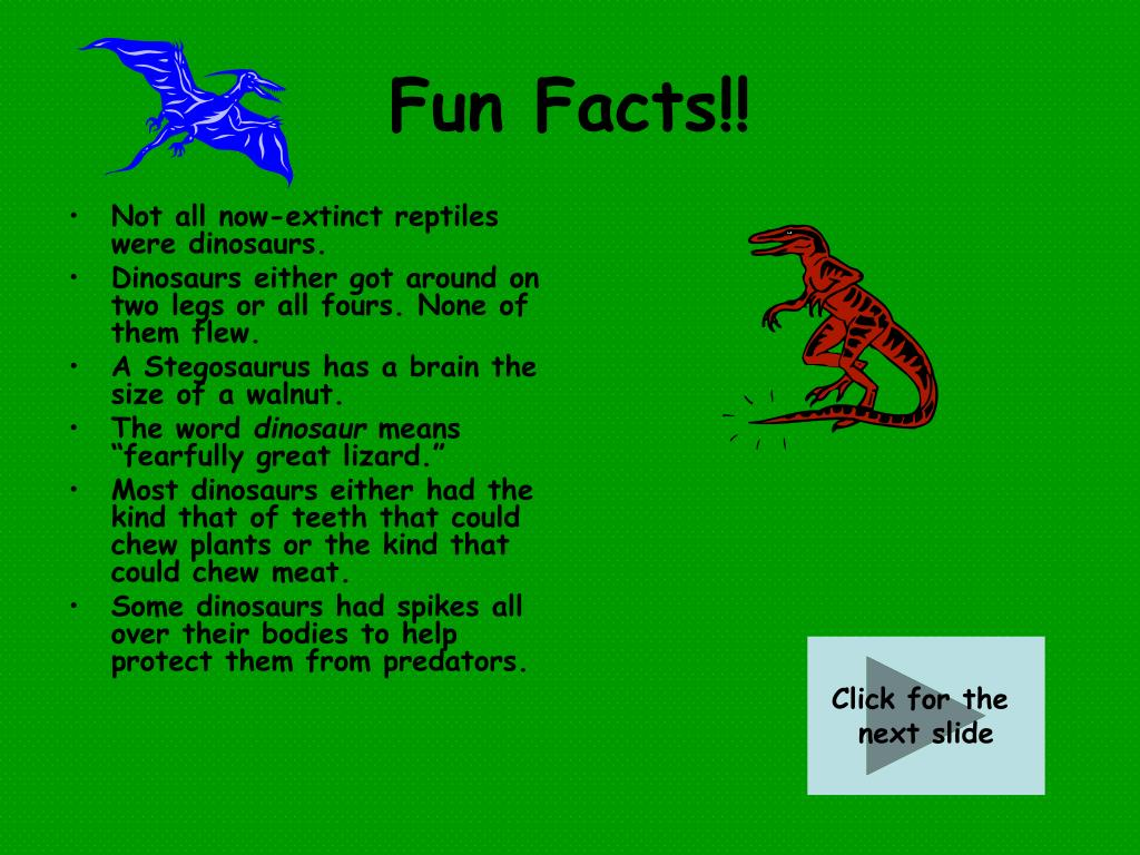 Fun Facts!!