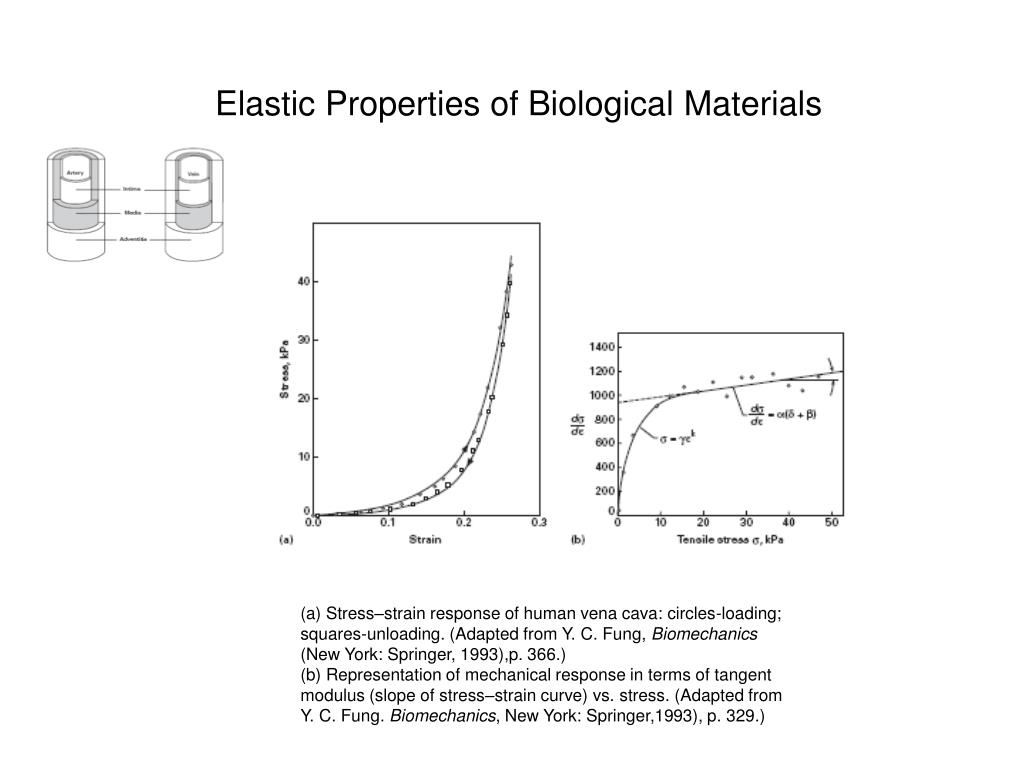 Elastic Properties of Biological Materials