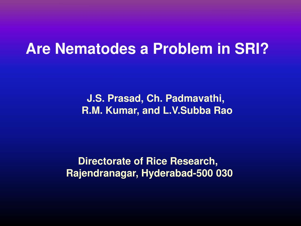 Are Nematodes a Problem in SRI?