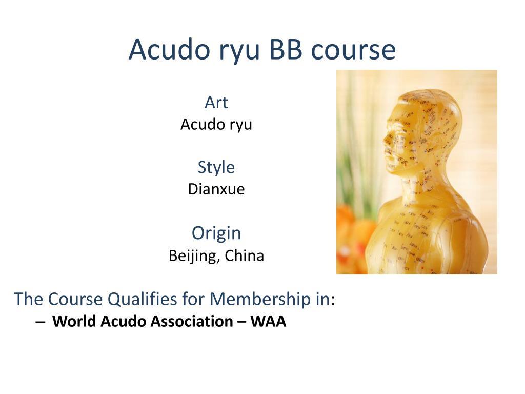 Acudo ryu BB