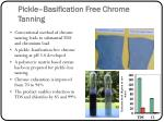pickle basification free chrome tanning