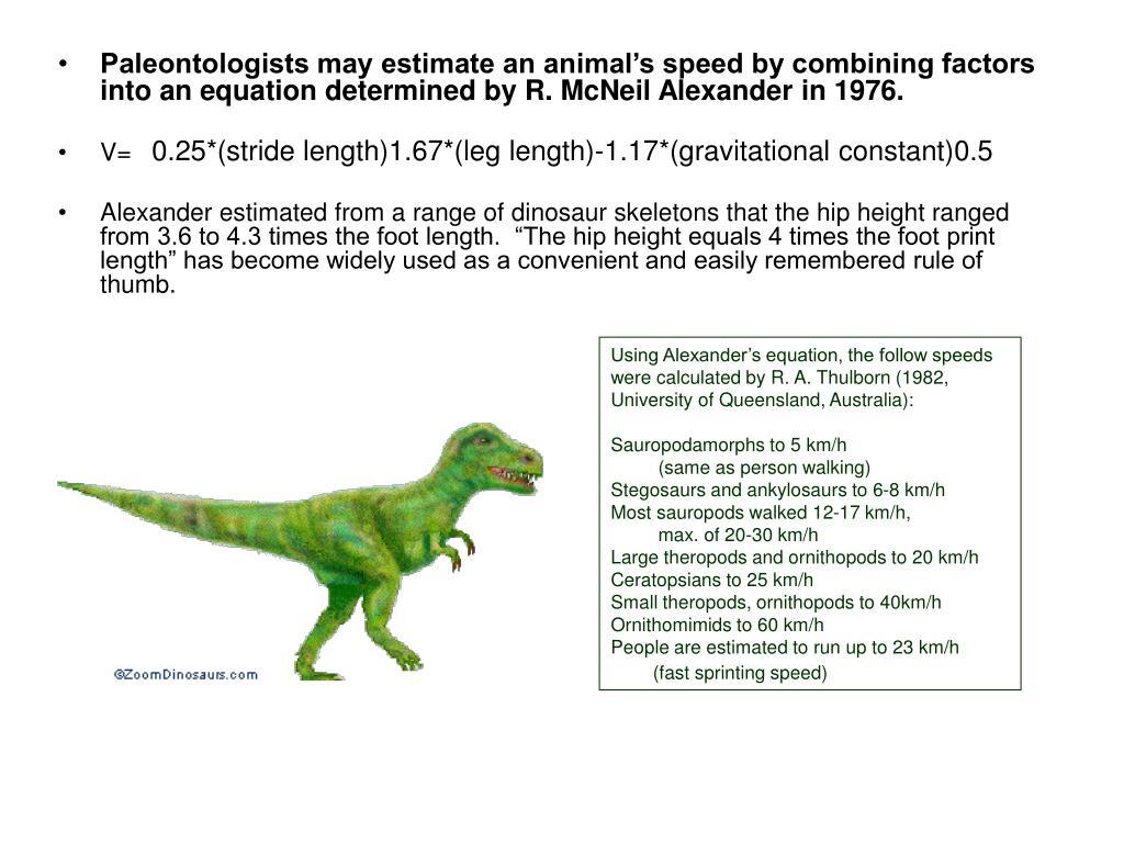 0.25*(stride length)1.67*(leg length)-1.17*(gravitational constant)0.5
