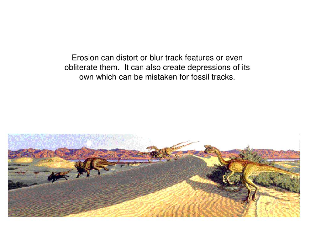 Erosion can distort or blur track features or even obliterate them.  It can also create depressions of its own which can be mistaken for fossil tracks.