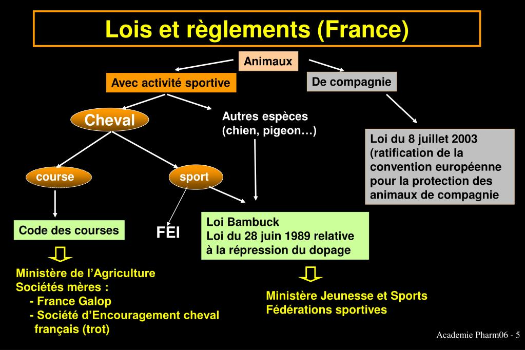 Lois et règlements (France)