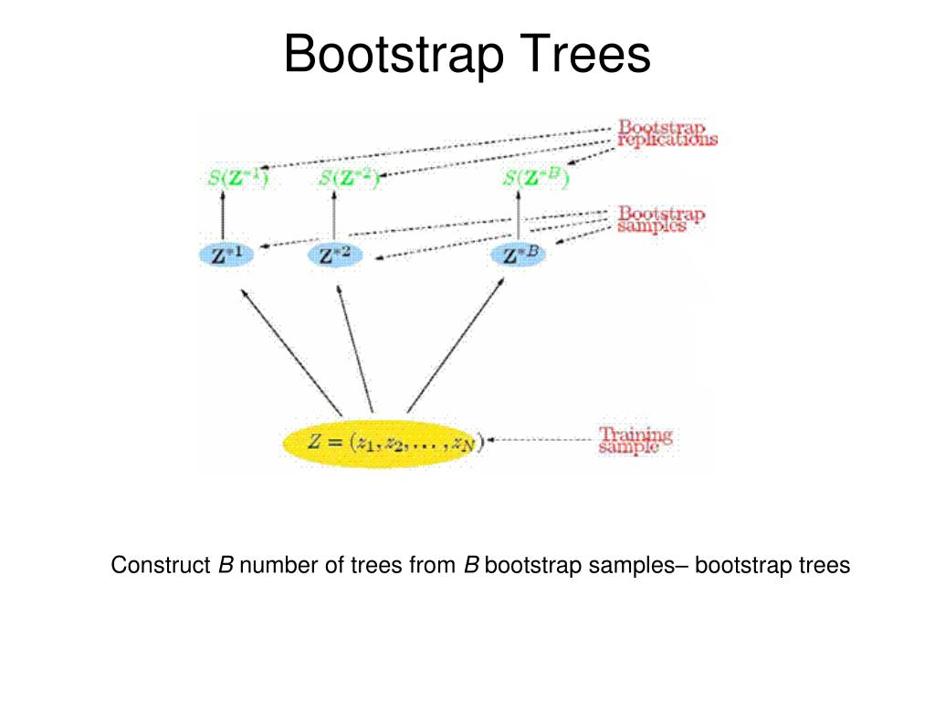 Bootstrap Trees