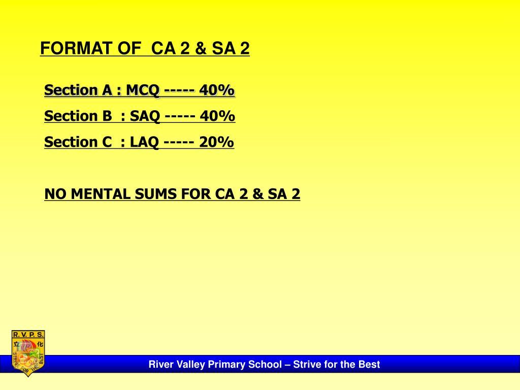 FORMAT OF  CA 2 & SA 2