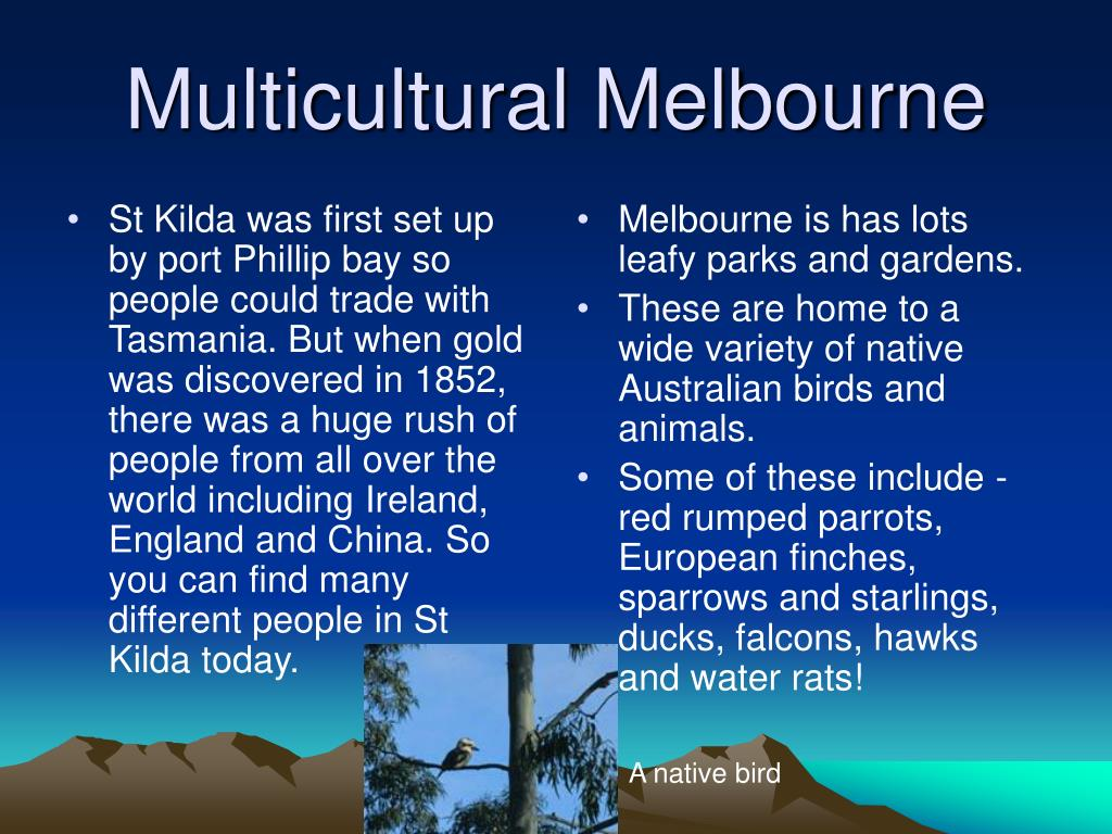St Kilda was first set up by port Phillip bay so people could trade with Tasmania. But when gold was discovered in 1852, there was a huge rush of people from all over the world including Ireland, England and China. So you can find many different people in St Kilda today.